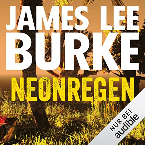 Neonregen audiobook cover art