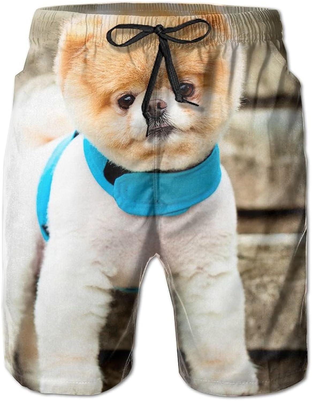 6cccc4d830 Tydo Cute Dog Dog Dog Men's Beach Shorts Loose Swim Trunks Surf Board Pants  With Pockets For Men c69411