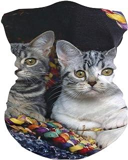 Cats Basket Animal Bavaclava Face Mask for Women Bandana Neck Gaiter Half Face Masks Cold Weather Men kids
