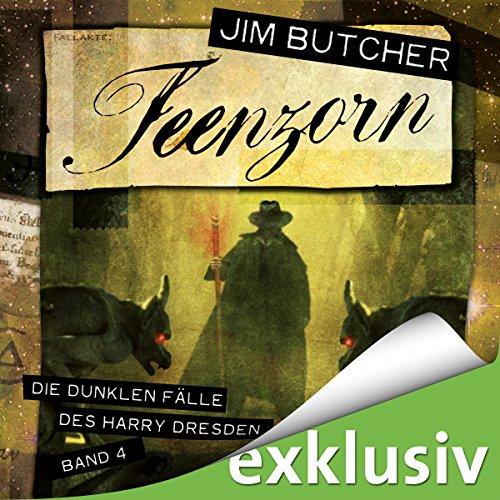 Feenzorn audiobook cover art