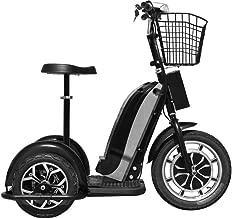 Best mototec electric trike Reviews