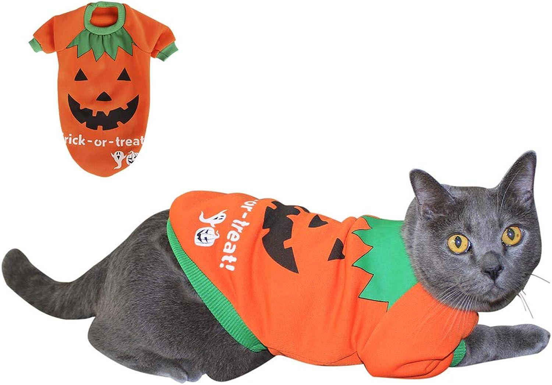 Found My Place Halloween Pet Pumpkin Costumes Puppy Dog and Cat Cute Fleece Shirt Pet Sweatshirt orange M
