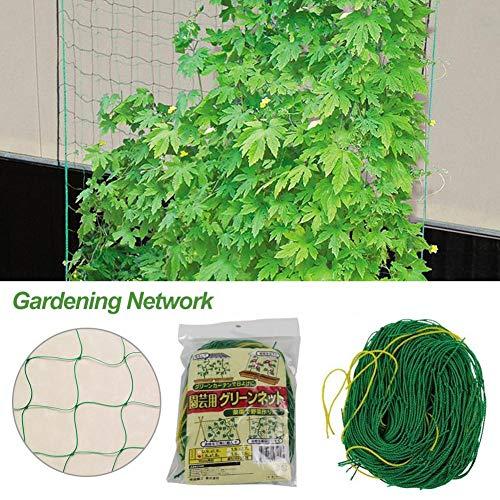 yummyfood Pflanze Ranknetz, Rankhilfen Gartennetze Kletterpflanzen Net Garten Spaliere Für Pflanze Blume Gemüse Wachsen, 1.8x0.9M / 1.8x2.7M / 1.8x3.6M