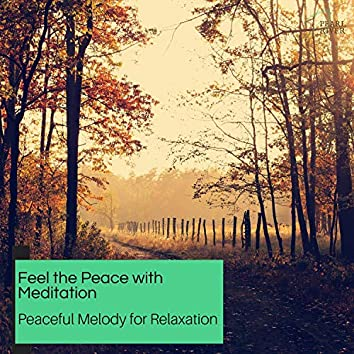 Feel The Peace With Meditation - Peaceful Melody For Relaxation