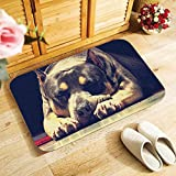 HJJQ Dogs Bullterrier Staffordshire Bull Terrier Doormat Entrance Floor Mats Indoor Outdoor Antislip Floor Mats