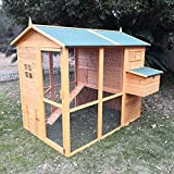 Animal Valley Poulailler Gaulois II avec Parc et Toit Shingle 4 à 6 Poules - L195 x l163 x H173cm
