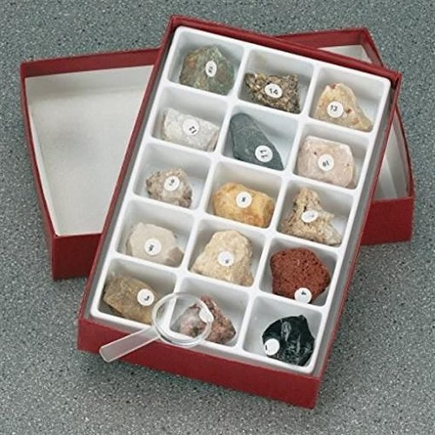 15 Different Rocks Study Set by American Educational Products