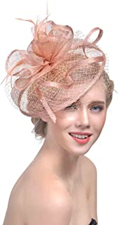 Wcysin Women's Big Veil Hat Feather Fascinator Cocktail Party Hair Clip Hat (Rose gold)