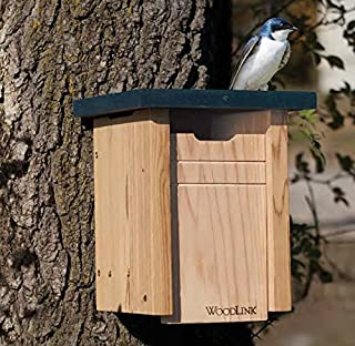 royal wing bluebird house