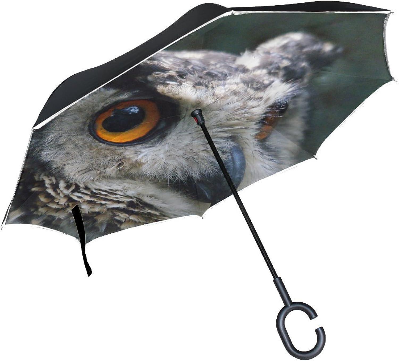 Animal Owl Verreaux Adorable Small Fluffy Baby Flying Nature Ingreened Umbrella Large Double Layer Outdoor Rain Sun Car Reversible Umbrella