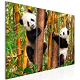 Tabla decoración mural de la panda - 90 x 60 cm Vista de impresión en lienzo Salón Apartamento - listo para colgar - 014232a