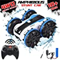RC Car Amphibious Remote Control Car Boat with 2.4Ghz 4WD Off Road Rock Crawler Double Sided 360¡ã Rotating Vehicle Hobby RC Car Truck Electric Hobby Toy Gifts for 6+ Girls Boys Teens Aadults from Landtaix
