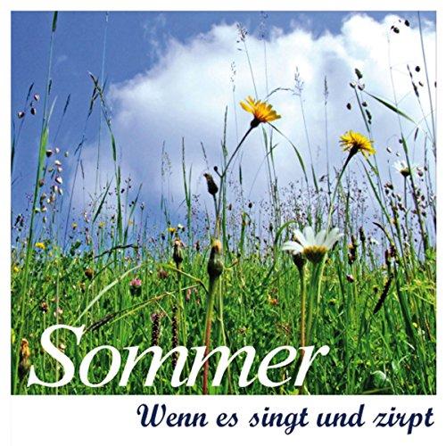 Sommer Titelbild
