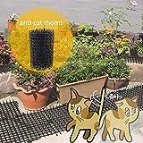 Juman634 Spine Anti-Gatto in plastica Rispettoso dell'ambiente...