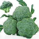 Grüner Blumenkohl Samen 100+ Brassica Oleracea Bio Premium Gemüse Obst Einfach zu züchten Samen...