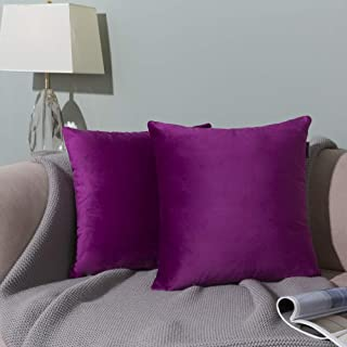 WLNUI Set of 2 Soft Velvet Solid Purple Decorative Square Throw Pillow Covers Set Cushion Case for Sofa Couch Home Decor 24x24 Inch 60x60 cm