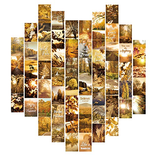 "HPNIUB Esthetical Autumn Scenery Wall Collage Kit,Boho Fall Leaf Forest Teens Aesthetic Posters,Set of 60(4""x6"") for Teenagers Bedroom Dorm Room Decor"