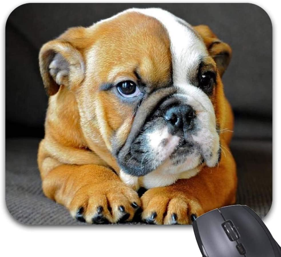 Mouse Pads English Bulldog Mat Max 48% OFF Game Deskt Office Classic Accessory