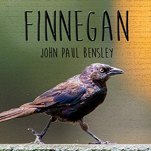 Finnegan Audiobook By John Paul Bensley cover art