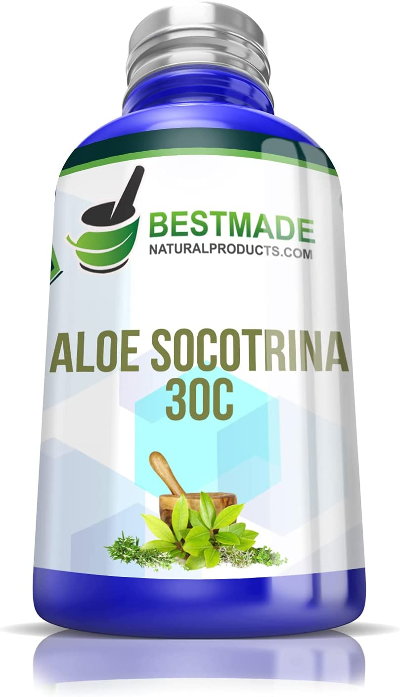 Aloe Socotrina Manufacturer direct delivery Challenge the lowest price of Japan ☆