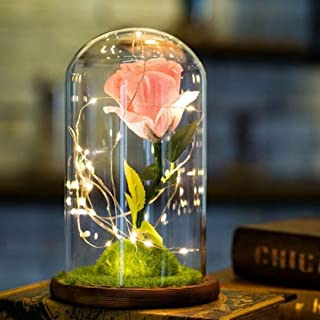 Enchanted Beautiful Rose Valentines Day 2019 Gift Beauty and The Beast Forever Flower LED Light Up Glass Display (22 Designs) Blue Purple Pink Red White Gold