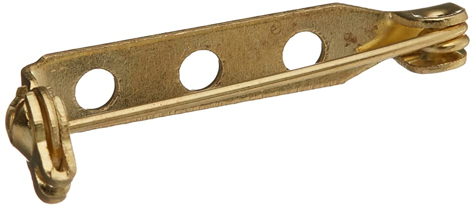 Daricesafety Catch Pin Backs - Gold - 1