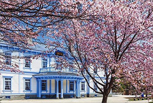 【Amazon.co.jp 限定】満開の桜と豊平館 ポストカード3枚セット P3-178