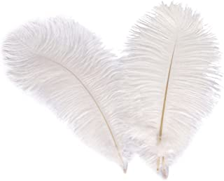 Wionya 10pcs Ostrich Feather Craft 12-14inch(30-35) Plume for Wedding Centerpieces Home Decoration