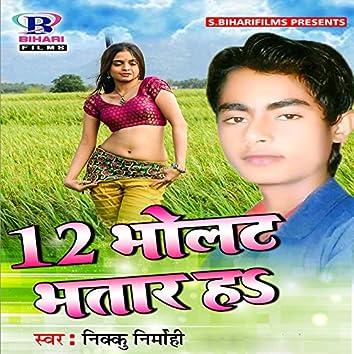 12 Volt Bhatar Ha - Single