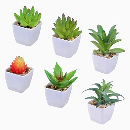Tifuly 6 Pcs Artificial Potted Succulent Plants Realistic Small Succulents Fake Greenery Mini Simulation Plant With Melamine White Pot For Home Office School Decoration Combination 4 Amazon Co Uk Kitchen Home