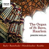 Joseph Nolan spielt die Orgel von St Bavo, Haarlem