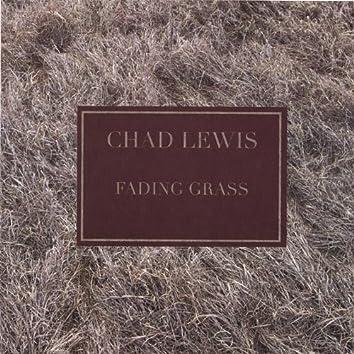 Fading Grass