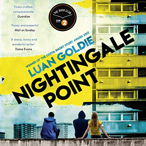 Nightingale Point cover art