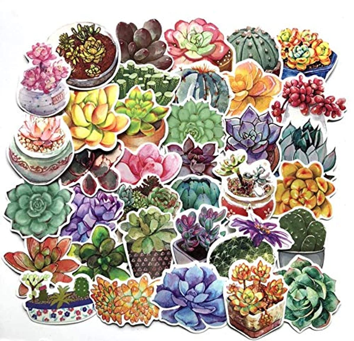 Astra Gourmet Cute Potted Cactus and Succulent Plants Stickers for Your Laptop, Scrapbook, and Daily Planner by Navy Peony (71 Pieces)