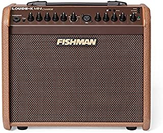 fishman loudbox mini di output