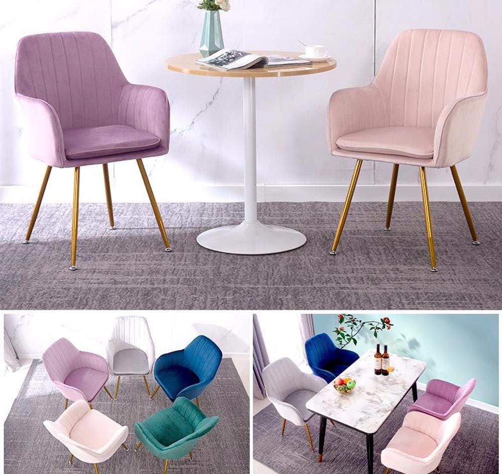 Lilac Fower Shop Lamp Chaise de Salle à Manger en Or Rose Gris Chaise de Maquillage Chaise à Dossier en métal Green