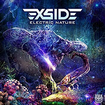 Electric Nature