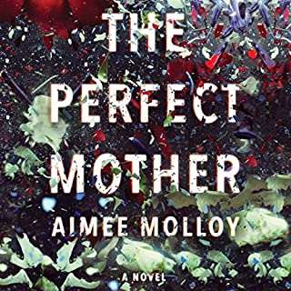 Page de couverture de The Perfect Mother