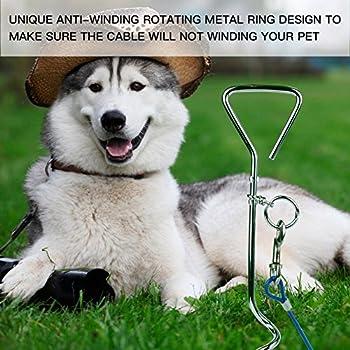 CtopoGo 10ft/16ft/33ft - Câble d'attache pour chiens,chien cravate câble, câble de cravate pour animaux, animaux de compagnie plomb pour petit / moyen taille (3m, Rouge)