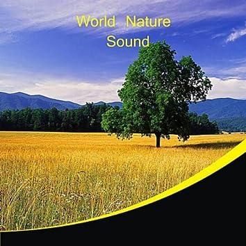 World Nature Sound
