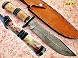 REG-BH-83, Handmade Damascus Steel 13.60 Inches Bowie Knife - Colored Bone & Buffalo