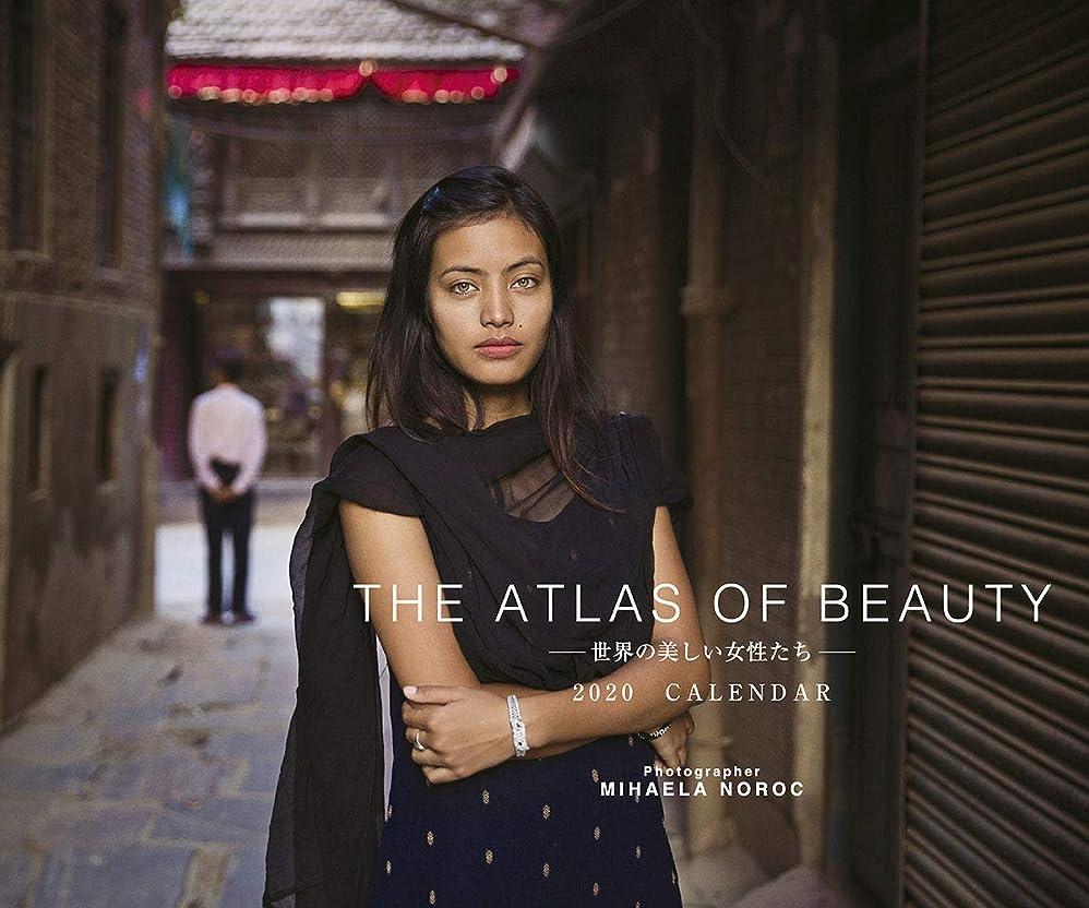 受粉者違う織機トライエックス THE ATLAS OF BEAUTY 世界の美しい女性たち 2020年 カレンダー CL-510 壁掛け 美女