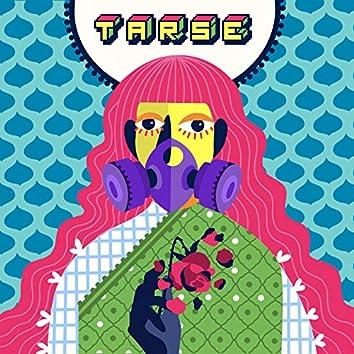 Tarse