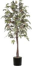 Best alcott hall tree brown Reviews