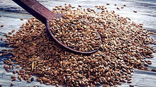 Graines de Lin Brun - 1kg