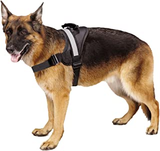 german dog harness