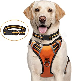 Best dog harness lead and collar set Reviews