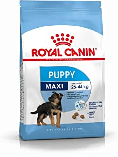Royal Canin Maxi Junior, 15 kg