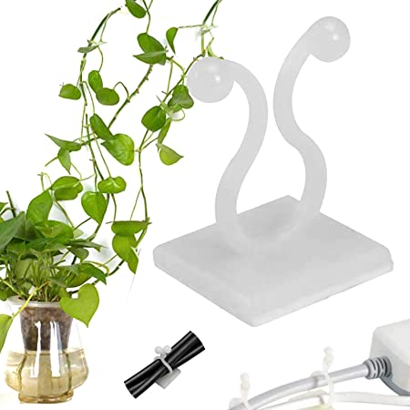 100pcs Invisible Wall Vines Fixture Wall Sticky Hook Vine Plant Fixer Wall Clip