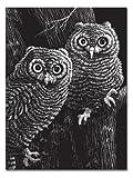 Melissa & Doug Scratchboard - Black Coated 10 pt 11 x 13 (10 boards)...